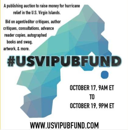 USVIPubFund